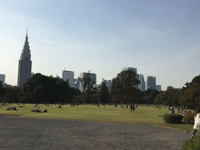 Gyoen Park Shinjuku